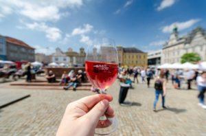 1. degustační festival vinařství z Čech a Moravy v Jičíně